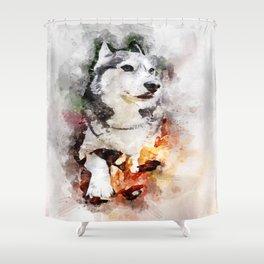 Tika'ani our Siberian Husky. Shower Curtain