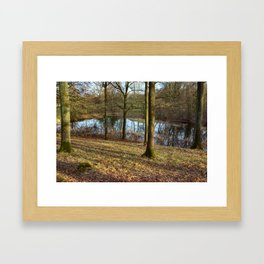 Reflections in the forest Framed Art Print
