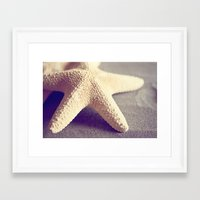 starfish Framed Art Prints featuring Starfish by Dena Brender Photography