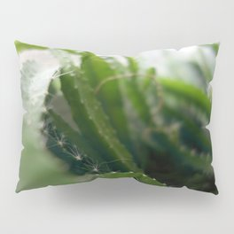 Pitahaya Pillow Sham
