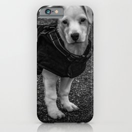 puppers iPhone Case