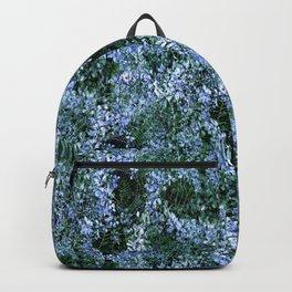 Spider Haven.... Backpack