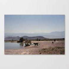 The Waterhole Canvas Print