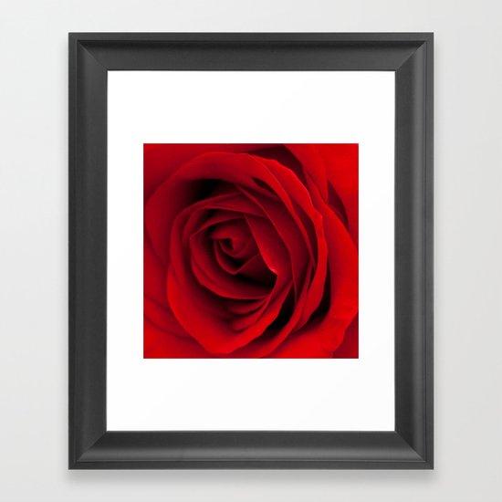 Heart of a rose  Framed Art Print
