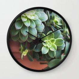 Succulent Loveliness Wall Clock