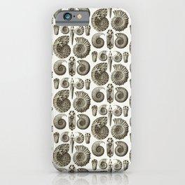 Ernst Haeckel Ammonitida Ammonite iPhone Case