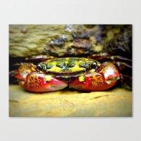 crab Canvas Prints featuring Crab by Travis Davis