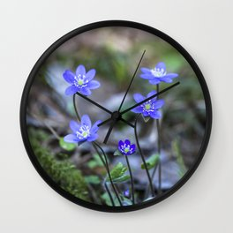 Anemone in forest Wall Clock