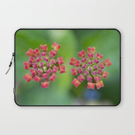 Spreading Sunset Latana Laptop Sleeve