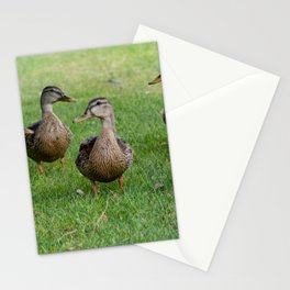 8 Little Ducks Stationery Cards