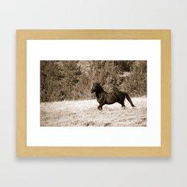 Free Runner - Sepia Framed Art Print