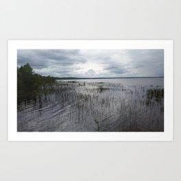 Lake Waccamaw Art Print