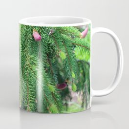 Norway Spruce IV Coffee Mug