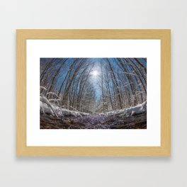 Natures Transformation  Framed Art Print