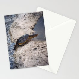 Snapping Turtle Stationery Cards