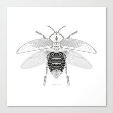 entomology 03. (ii) Canvas Print