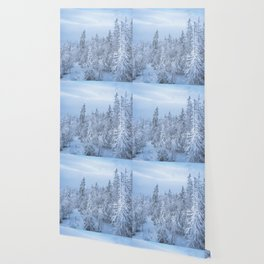 Winter forest in the Mountains Wallpaper