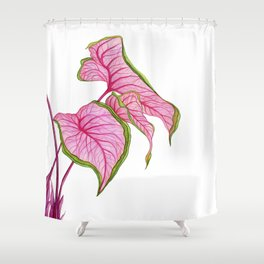 Lady Caladium Shower Curtain