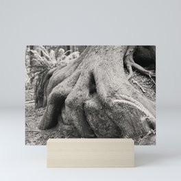 Old Growth Tree Roots Wizard Fingers Forest Woods Washington Northwest Boulder Geology Outdoors Land Mini Art Print