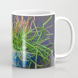 Succulent in Blue Wall Sconce Coffee Mug