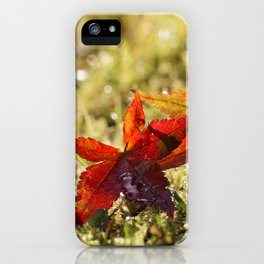 Indian Summer II Red marple leaves in wet grass at backlight iPhone Case