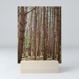 Sleeping Trees Mini Art Print