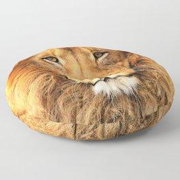 Wild Cat Glare Floor Pillow