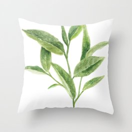 Green tea leaves  Throw Pillow