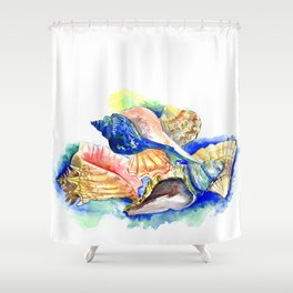 Beach design, Seashell, ocean beach seashell artwork, beach house Shower Curtain