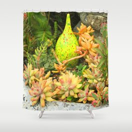 Contemporary, Colorful Succulents in Vintage Clay Pot Shower Curtain