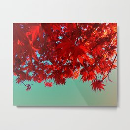 Fire Maple Metal Print