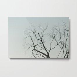 Birds on the tree Metal Print