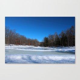 Oak Openings in Winter Canvas Print