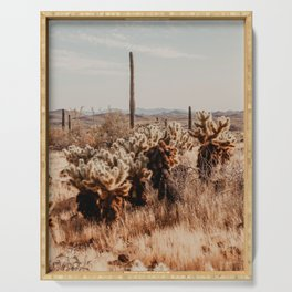 Desert Arizona   Fine Art Travel Photography Serving Tray