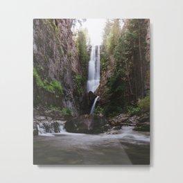 Summer in Colorado Metal Print