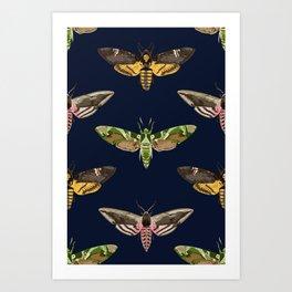 Hawk Moths I Art Print