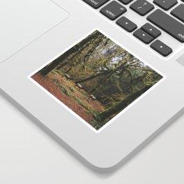 Rainforest Elk Sticker