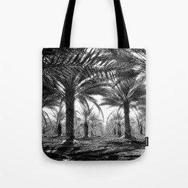 Vintage Palms Trees : Coachela Valley California 1937 Tote Bag