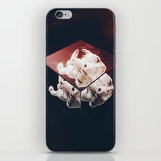 Divided iPhone Skin