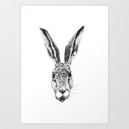Black and White Big Stare Hare Art Print