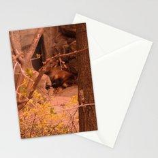 Yoghi Stationery Cards