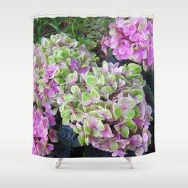 Pink & Green Hydrangea Shower Curtain