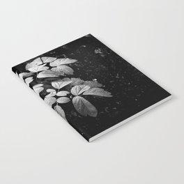 Monochrome Droplet Notebook