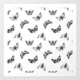Autumn Night Moth White Art Print