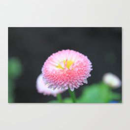 Kayla's Pink Flower Canvas Print