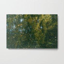 Holme Woods 3 Metal Print