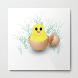 Chicken, chick, peeper, yellow chicken, egg shell, egg, shell, Easter, Easter chicken Metal Print