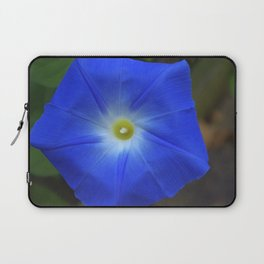 Blue, Heavenly Blue morning glory Laptop Sleeve