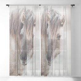 Konik Horse Photo | Wild Horse Photography | Konik Polski Sheer Curtain