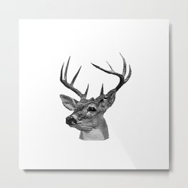 Black & White Deer Head Metal Print